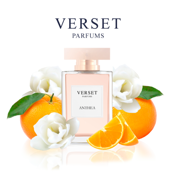Verset Parfums Anthea